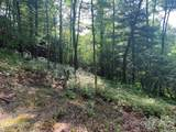 Lot 132 Green Hollow Lane - Photo 14
