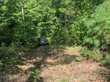 Lot 132 Green Hollow Lane - Photo 15