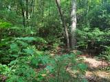 Lot 132 Green Hollow Lane - Photo 18