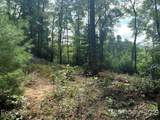 Lot 132 Green Hollow Lane - Photo 4