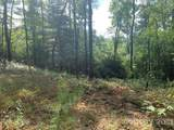 Lot 132 Green Hollow Lane - Photo 5