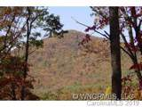 2 Wood Lily Trail - Photo 2