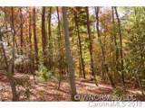 2 Wood Lily Trail - Photo 4