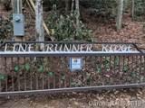 TBD Line Runner Lake Road - Photo 2