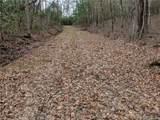 TBD Line Runner Lake Road - Photo 5