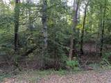 Lot 674 Chapel Hill Drive - Photo 4