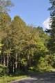 000 Tempie Mountain Road - Photo 3
