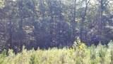 169 Pine Mist Drive - Photo 2