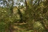 1298 Cane Creek Road - Photo 19