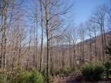 442 Ginseng Hollow Lane - Photo 4