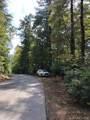Lot 2-B Dragon Tail Drive - Photo 4