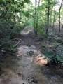 0 Robinson Creek Road - Photo 5
