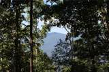 324 Boar Ridge Road - Photo 1