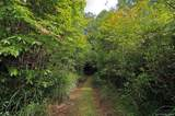 4151 Jeter Mountain Road - Photo 13