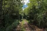 4151 Jeter Mountain Road - Photo 16