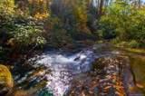 365 Hidden Hollow Falls Drive - Photo 6