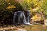 365 Hidden Hollow Falls Drive - Photo 7
