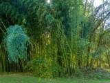 00 Plantation Drive - Photo 15