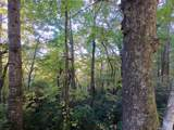 238 +/- Acres Old Fort Road - Photo 12