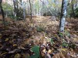 238 +/- Acres Old Fort Road - Photo 16