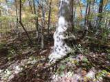 238 +/- Acres Old Fort Road - Photo 22