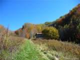 TBD Roaring Fork Road - Photo 1