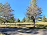 4.78 AC off Cane Creek Road - Photo 28