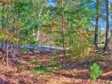 Lot 23 Hawks Nest Trail - Photo 11