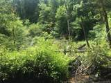 000 Moonshine Creek Trail - Photo 5