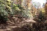 99999 Sequoia Trail - Photo 3