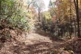 99999 Sequoia Trail - Photo 4