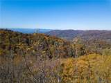 90 Woodland Aster Way - Photo 2
