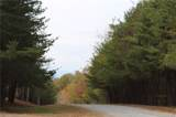 000 Forest Trail Drive - Photo 27