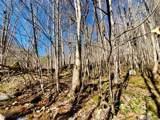 999 Scronce Creek Road - Photo 17