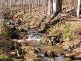 999 Scronce Creek Road - Photo 2
