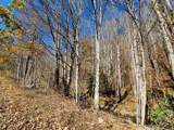 999 Scronce Creek Road - Photo 7
