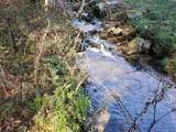 9999 Scronce Creek Road - Photo 29