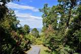 31.66 Acres OFF Cave Summit Trail - Photo 12