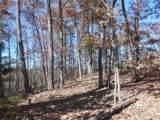 V/L Summit Trail - Photo 11