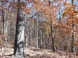 V/L Summit Trail - Photo 12