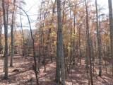 V/L Summit Trail - Photo 14