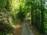 Lot 5 Spruce Flats Road - Photo 4