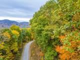 270 Tearshirt Lane - Photo 1
