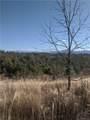 TBD Bull Creek Road - Photo 1