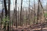 TR 77 Long Ridge Trail - Photo 18