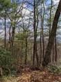 TR 77 Long Ridge Trail - Photo 5