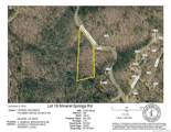 0 Mineral Springs Mountain Road - Photo 1