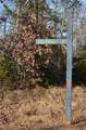 Lot #43 Bald Eagle Lane - Photo 2