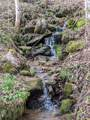 2281 Spillcorn Road - Photo 14