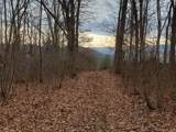 9999 Towhee Trail - Photo 10